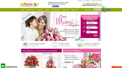 da-flores-home-page-web-optimization-website-review-portfolio-hfarazm