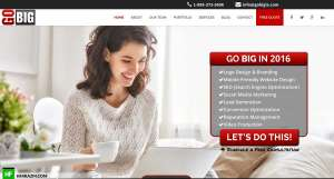go-big-la-home-design-development-optimization-seo-portfolio-hfarazm